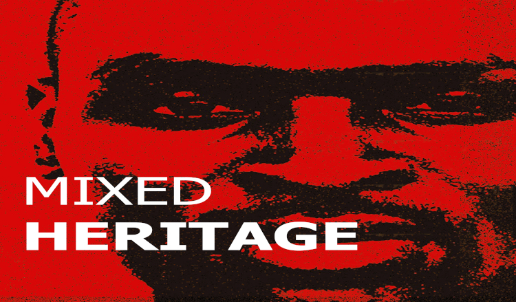 Mixed Heritage: a 30 track Extended Compilation by Dyllann