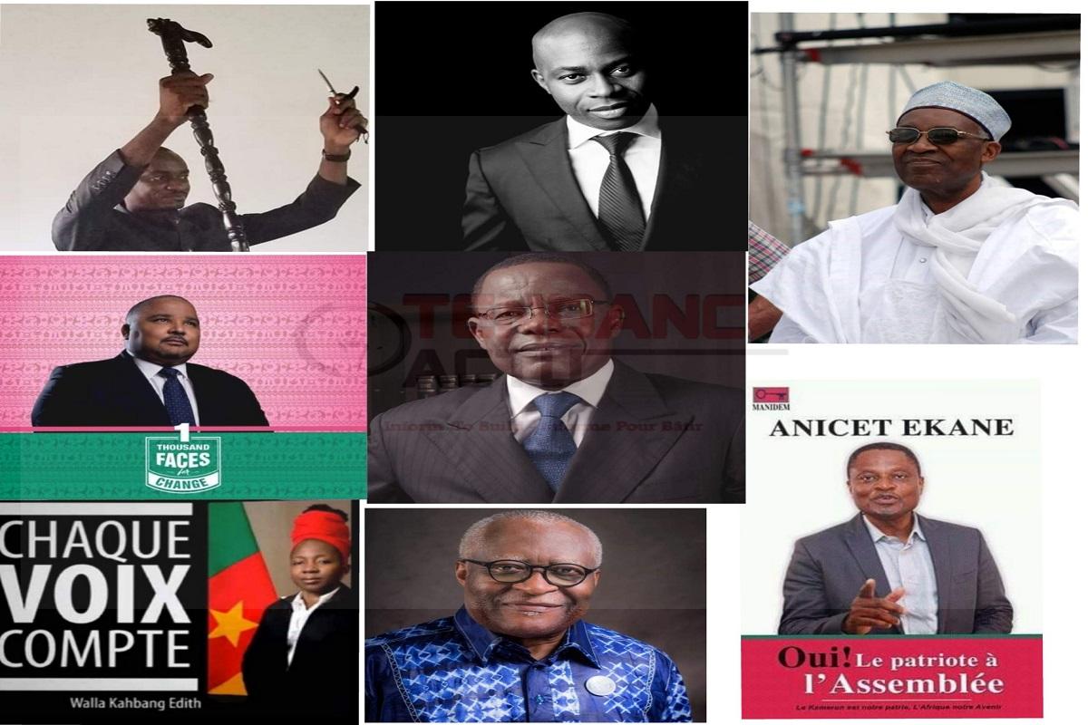Cameroun: une opposition tyrannique